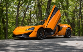 Обои McLaren, 570S, суперкар, макларен