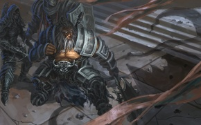 Картинка diablo 3, demon hunter, barbarian, reaper of souls