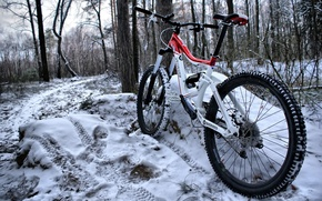 Картинка зима, лес, снег, велосипед, рама, цвет