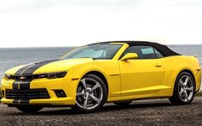 Обои 2013, chevrolet, camaro, ss, convertible, шевроле