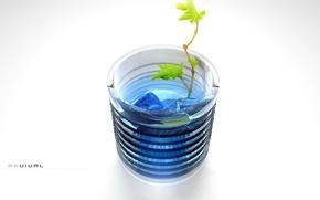 Картинка растение, минимализм, Стакан