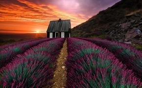 Обои закат, пейзаж, природа, растительность, горы, дом