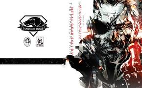 Картинка Snake, art, konami, Kojima Productions, Naked Snake, mgs, Big Boss, Metal Gear Solid V: The …