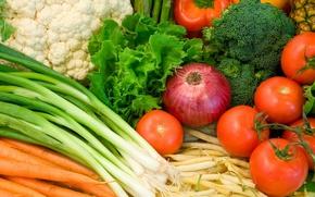 Обои помидоры, морковь, зелень, еда, лук
