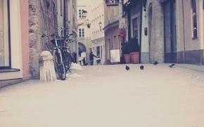 Картинка птицы, велосипед, city, город, фото, улица, дома, дорожка, голуби, стоит, тратуар, обои для рабочего стола, …