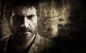 Обои взгляд, природа, темнота, путь, игра, борода, выжившие, The Last of Us, мышление, Джоэл, Последние из ...