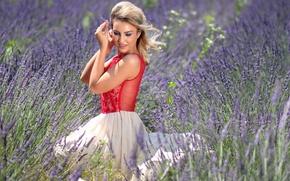 Картинка поле, лето, девушка, природа, юбка, блондинка, блузка, лаванда