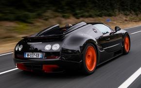 Обои bugatti, veyron, grand sport, roadster, vitesse, wrc edition, car