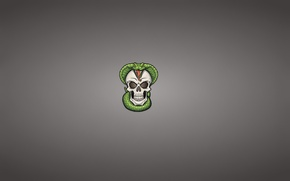 Картинка череп, змея, минимализм, голова, скелет, кобра