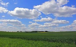 Картинка поле, небо, трава, облака