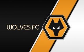 Картинка wallpaper, sport, logo, Wolves, football, Wolverhampton Wanderers FC