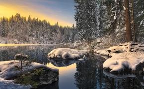 Картинка зима, снег, река, ели