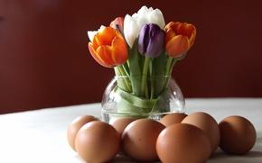 Картинка цветы, тюльпаны, яица