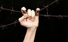 Картинка свобода, забор, рука