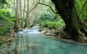 Картинка деревья, камни, водопад, речка, мостик