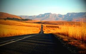 Картинка дорога, трава, путь, пейзажи, дороги, красота