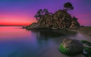 Картинка пляж, деревья, пейзаж, закат, скала, океан, камень, остров