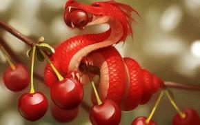 Картинка вишня, дракон, ветка, ягода, арт