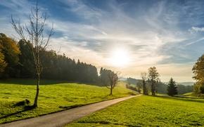 Картинка дорога, зелень, лето, небо, трава, солнце, облака, деревья, поля, леса