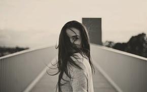 Картинка девушка, ветер, волосы