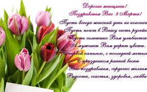 Картинка тюльпаны, 8 марта, tulips, поздравление, spring, женский день