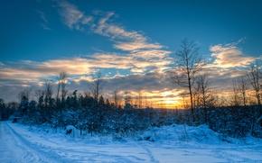 Картинка зима, дорога, небо, облака, снег, деревья, закат, природа, тропинка