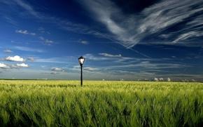 Обои поле, облака, фонарь