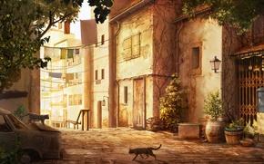 Картинка машина, кошки, город, улица, дома, растения, остов, арт, бельё, кашпо