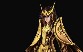 Картинка gold saint, andromeda, Shun