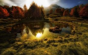 Картинка осень, солнце, деревья, горы, отражение, водоём, золотая
