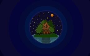 Картинка деревья, ночь, озеро, дом, остров, звёзды, мнимализм
