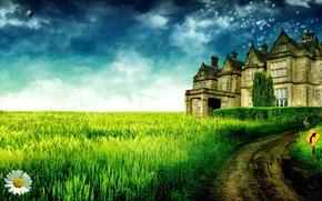 Картинка небо, трава, деревья, пейзаж, замок, ромашка