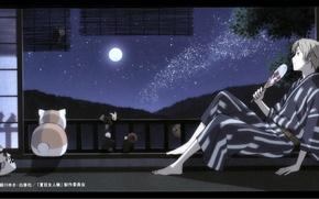 Картинка кот, деревья, ночь, луна, окно, веер, млечный путь, art, natsume yuujinchou, тетрадь дружбы нацумэ, ёкай, …