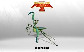Картинка weapon, 2011, mantis, Kungfu Panda, Kungfu Panda 2, Kungfu