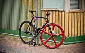 Картинка велосипед, спорт, рама, колеса, велоспорт, шоссейник