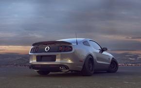 Картинка Mustang, Ford, Shelby, Авто, Зад, Форд, Мустанг, Car, GT 500, Шелби, Drag