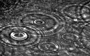 Картинка капли, макро, дождь
