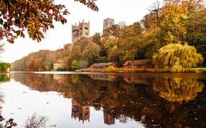 Картинка деревья, отражение, Англия, зеркало, Дарем собор, Река одежда, Дарем