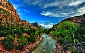 Картинка камни, скалы, ущелье, Юта, США, речка, Zion National Park, кусты, Utah