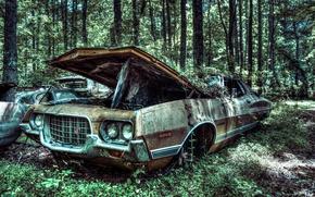 Картинка джорджия, vehicle, сша, forest, 1972, старый, old car, автомобиль, tree, дерево, машина, лес, Gran Torino ...