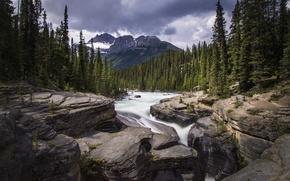 Картинка лес, горы, река, камни, водопад, Mistaya Canyon