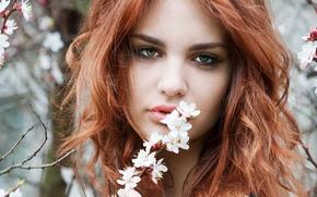 Картинка взгляд, девушка, волосы, весна, зеленые глаза, веточки