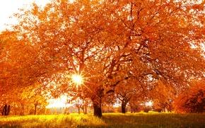 Обои природа, пейзаж, осень, время года
