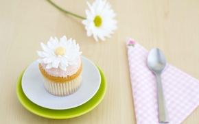 Обои выпечка, десерт, сладкое, цветок, украшение, кекс, крем, ромашка, ложка