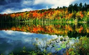 Картинка осень, лес, небо, облака, озеро