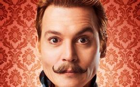 Картинка Johnny Depp, cinema, wallpaper, brown hair, brown eyes, eyes, man, movie, face, film, mustache, comedy, ...