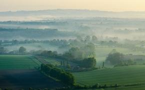 Обои небо, утро, туман, холмы, поле, трава