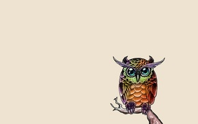 Картинка сова, птица, краски, минимализм, ветка, живопись, owl