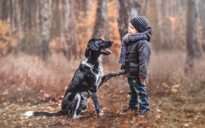 Картинка настроение, собака, мальчик, друзья