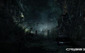 Картинка свет, ночь, ветки, город, болото, солдаты, развалины, кусты, crysis 3